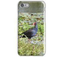 Moorhen & Lillypads! Lake Clarrie Hall. Hinterland Far Nth. N.S.W. iPhone Case/Skin