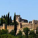 Christ Convent - The Castle by Luís Lajas