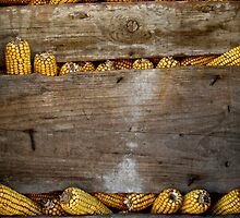 Corn holder  by Flávia Ferreira