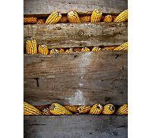Corn holder  Photographic Print