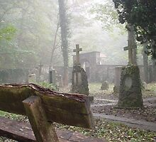 Lost graveyard by Sebastiaan Koenen