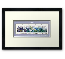 New Zealand Collection. Framed Print