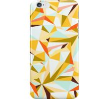 Golden Summer iPhone Case/Skin