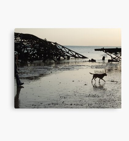 Doggie Paddle Canvas Print