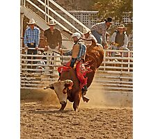 Rodeo Cowboy Riding a Bull Photographic Print