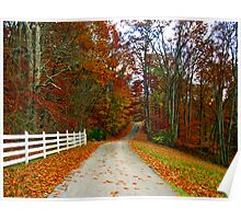 *COUNTRY ROAD* Poster