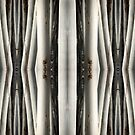 Eucalypt forest • Warrawong Sanctuary, South Australia by PETER CULLEY