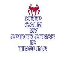 Keep Calm My Spidersense Is Tingiling Photographic Print