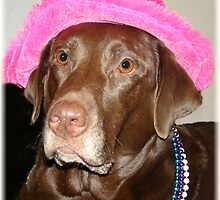 """Labrador Diva Named Lexie"" by tawaslake"