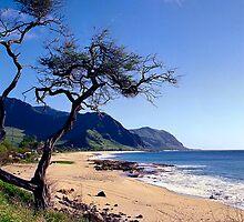 Waianae Coast by kevin smith  skystudiohawaii