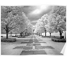 Infrared View of Trees at the Nelson Atkins Museum, Kansas City, Missouri  Poster