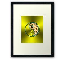 Aquarius & Monkey Yang Fire Framed Print