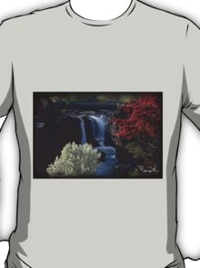 Great Falls Spring Foliage T-Shirt