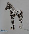 Appaloosa (For Skyhorse) by louisegreen