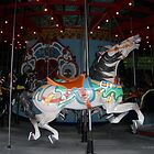 Central Park Carousel Horse by Patricia Anne McCarty-Tamayo