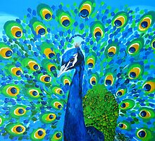 peacock by cathyjacobs