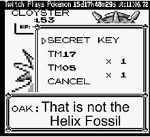 That's Not The Helix Fossil Photographic Print
