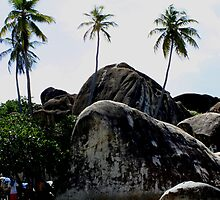 Big Boulders On Baths Beach by DARRIN ALDRIDGE