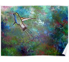 """""""Flight of the Hummingbird"""" Poster"""