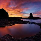 Cape Schank Dawn Pan by Robert Mullner