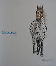 Knabstrup (For Kalaryder) by louisegreen