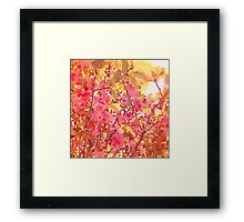 Cherry Blossom Canopy Watercolor Framed Print