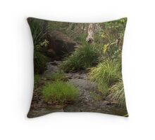 Harmony of Earth & Water Throw Pillow