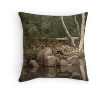 Mirror Mirror In the Pool Throw Pillow