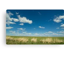 Green, Green Grass OF Home Canvas Print