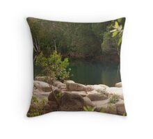 Stillness of the Stream Throw Pillow