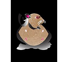 Superhero Hamster Photographic Print