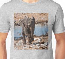 Elephant dance lesson Unisex T-Shirt