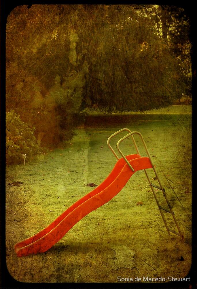lonely slide by Sonia de Macedo-Stewart