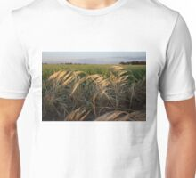 Splendor in the  Grass Unisex T-Shirt