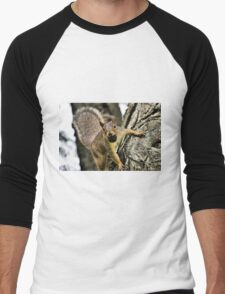 The Playful Squirrel Men's Baseball ¾ T-Shirt