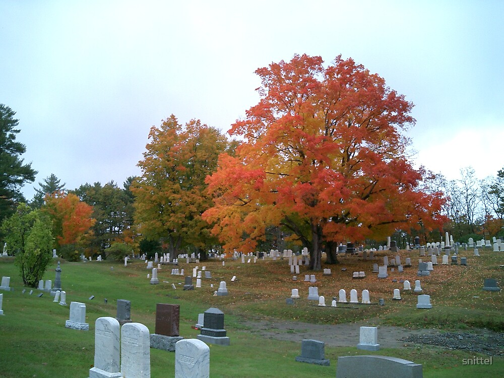 Maine Fall, Orono Cemetery by snittel