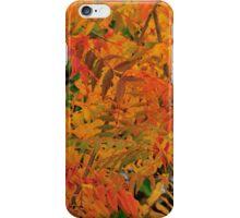 Chinese pistachio in autumn iPhone Case/Skin