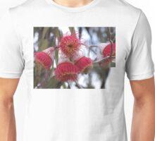 Eucalyptus Flowers Unisex T-Shirt