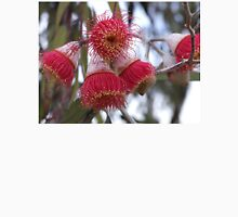Eucalyptus Flowers T-Shirt
