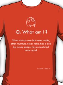 Riddle #2 T-Shirt