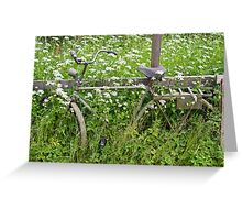 Old Bicycle Greeting Card