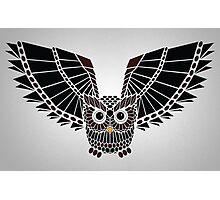 The Great Geometric Owl Photographic Print