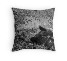 Restful Solitude Throw Pillow