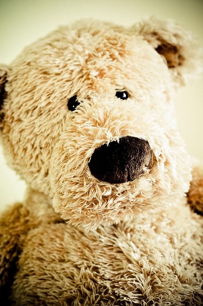 Teddy bear by Pat Shawyer