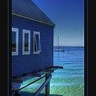 Blue View... by GerryMac
