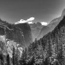 Yosemite Valley by Shaina Lunde