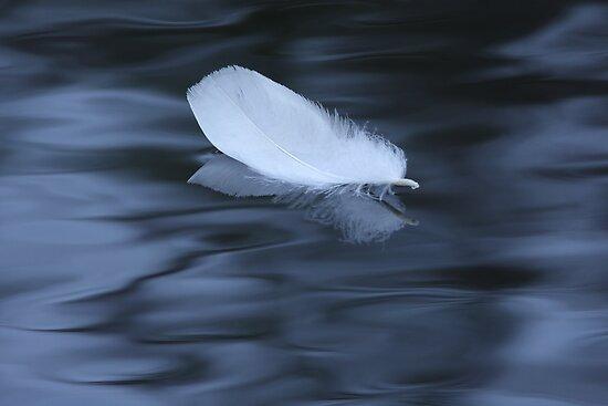Sailing to Serenity by William C. Gladish