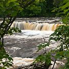 Aysgarth Falls, Wensleydale by Steve  Liptrot