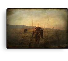 A new day dawning ... Canvas Print