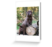 Log on Greeting Card